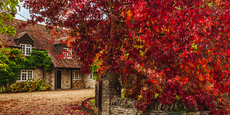 Autumnal Country Home